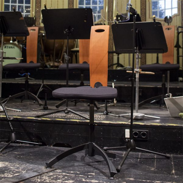 earo chair musician